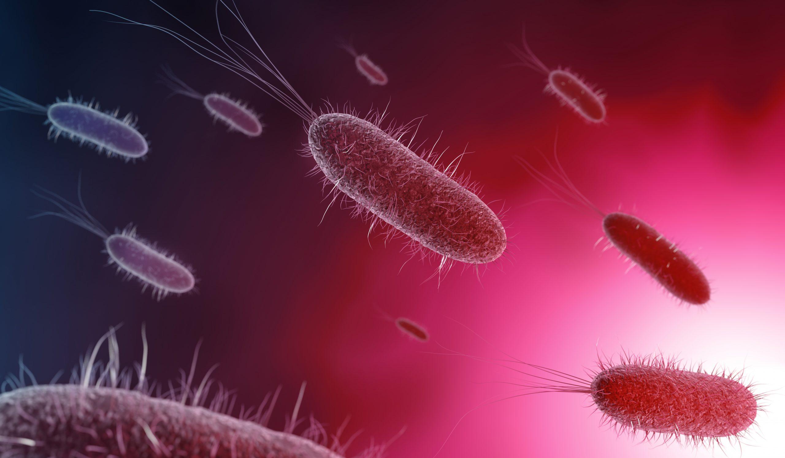 Por que a infecção viral que você tem hoje pode virar outra doença amanhã?